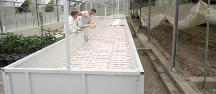 Electric Floor Heating Systems in Greenhouses