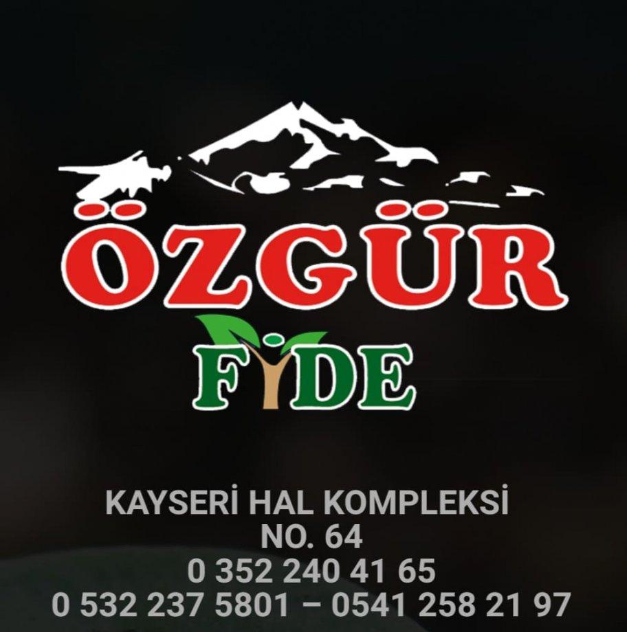 ÖZGÜR FİDE