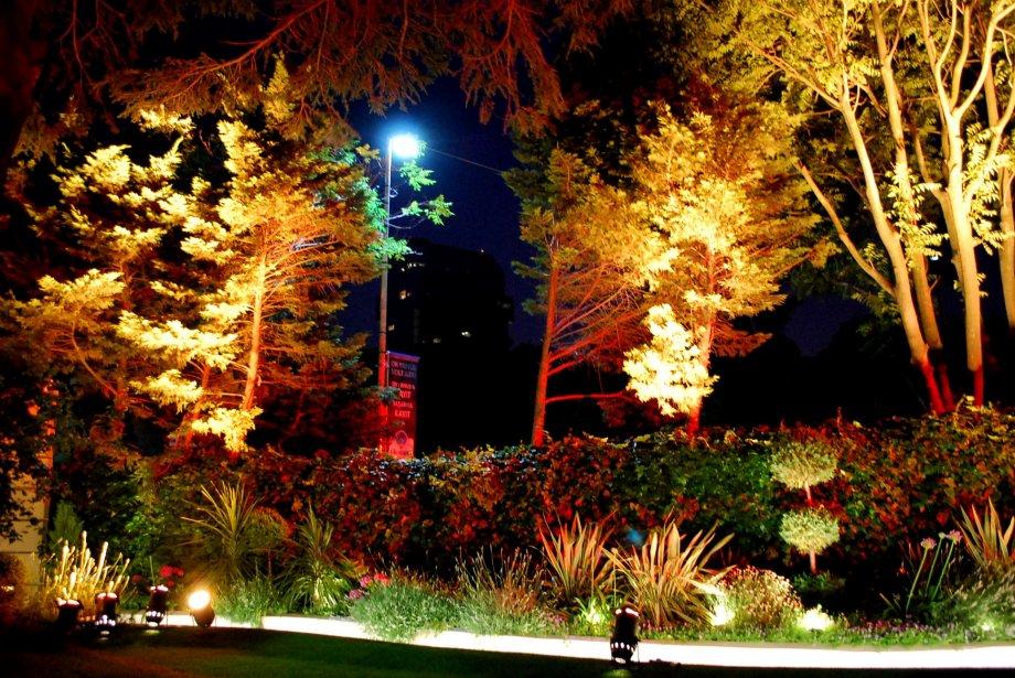 Işığın Sihri | Magical Lights