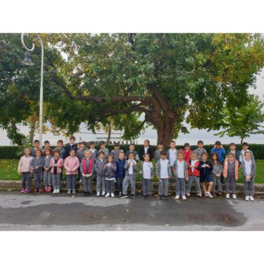 1. Sınıf Öğrencilerinin Florya Atatürk Köşk'ü Ziyareti