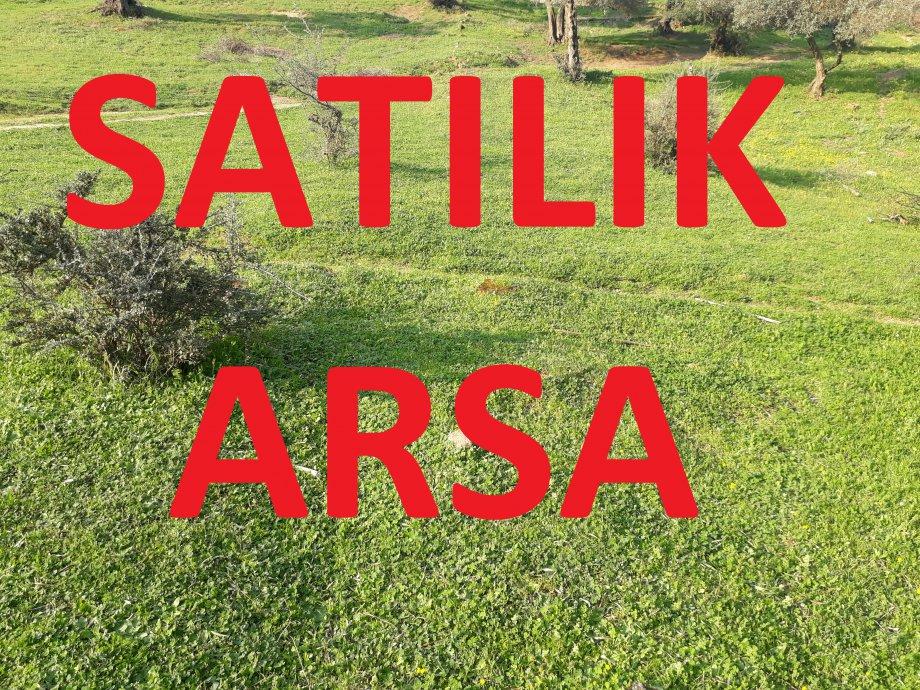 Aydın Satılık Arsa 13.000 m2 incirliova 7.500.000 Tl.