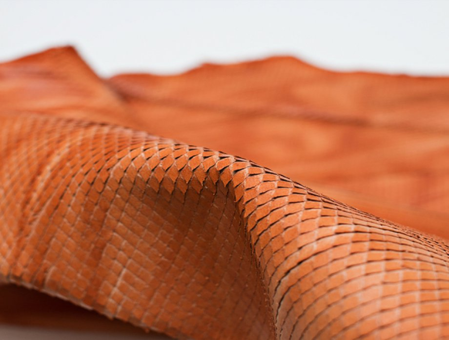 What is Embossed Leather and Printed Leather?